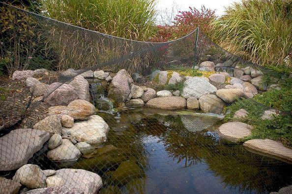 Installing Pond Netting: Aquascape's Dave Kelly suggests tenting the net so it won't sag into the pond when its full of leaves.  Photo: Aquascape Inc.