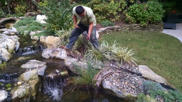 Pond Netting: Pond nets can keep out even the smallest pieces of debris such as falling leaves and pine needles. We recommend netting from Aquascape Inc. (St. Charles, IL) which includes hold-down staples to secure it.