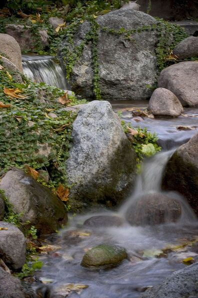 Backyard Water Features in Fall (Long Island/NY): Watching leaves moving along a backyard stream is as peaceful an activity as you can find. If there's only one or two — just sit back and enjoy the scene! But don't let too many leaves collect in your backyard water features. Photo: Aquascape Inc.