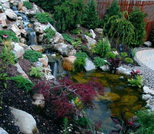 Main Pond: