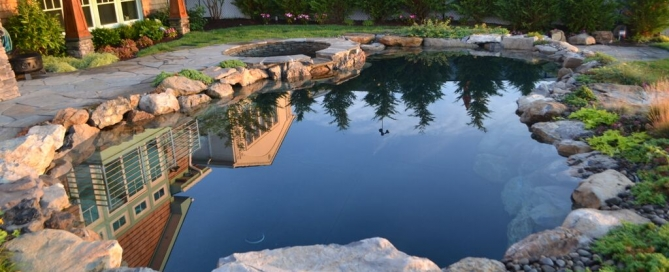 Using Pool and Pond Equipment Together: