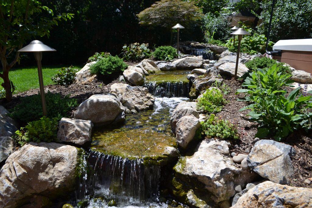 Backyard Focal Points: