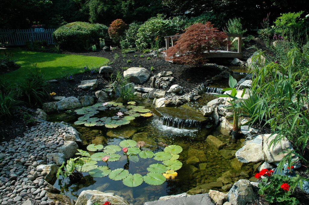 Rainwater harvesting because open space is a terrible for Putting a pond in your backyard