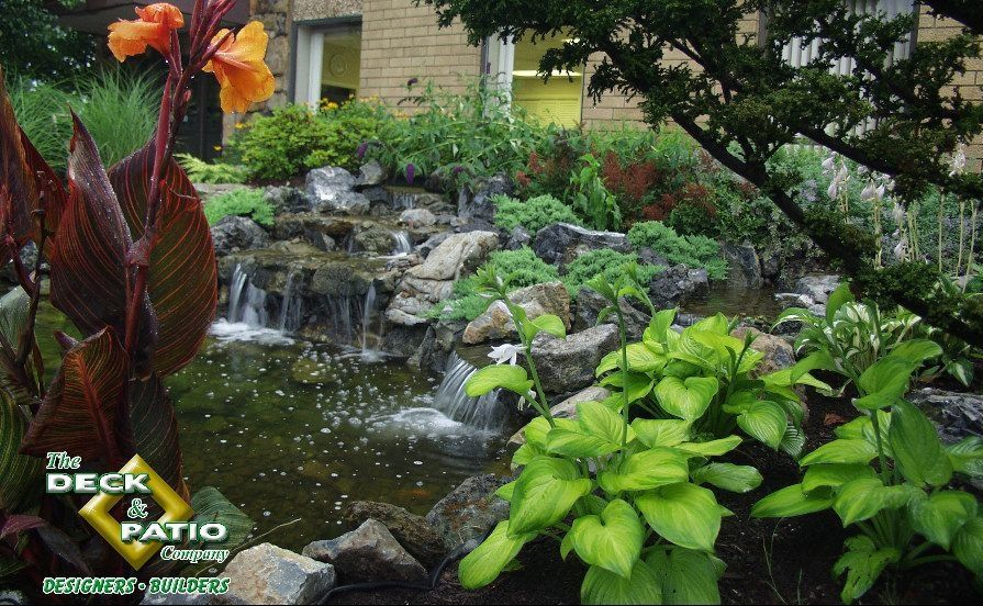 Landscaping Around a Pond: