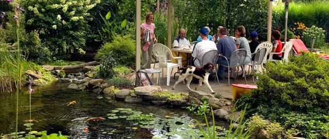 Dining Al Fresco By a Pond:
