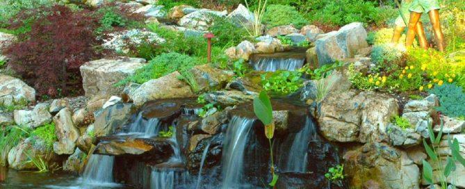 Backyard Refuge with Pond:
