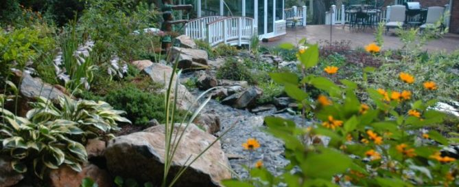 Deck and Patio created this naturally-sustained eco-system